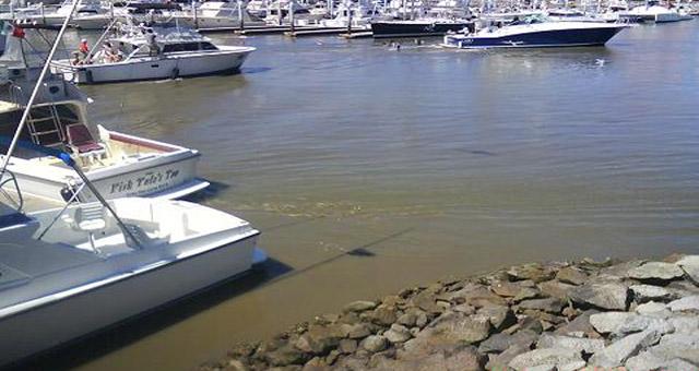 Marea Baja CSL 28-02-10