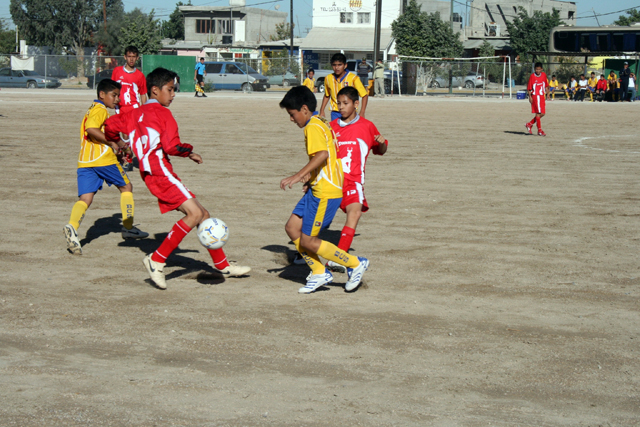 Posiciones Fútbol Infantil La Paz