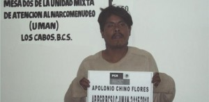 Apolonio Chino Flores