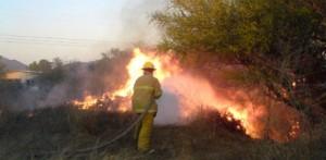 La Conafor pidió a la población evitar los incendios forestales, dado que la cifra en este año alcanza más de 1 mil hectáreas afectadas en 15 incendios.