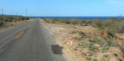 La carretera que inicia en el Valle de El Vizcaíno hasta el entronque a Bahía Tortugas, observa pésimas condiciones, está destrozada, significándose un alto riesgo para los automovilistas.