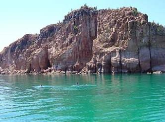 Más de 35 personas entre buzos y personal de apoyo realizaron este sábado una jornada de limpieza submarina en las inmediaciones de la isla Espíritu Santo, considerada como uno de los mayores atractivos turísticos que tiene La Paz, tanto para propios como para extraños.
