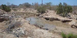 Esta es una poza en Cabo San Lucas que fue generada por el Organismo Operador del Agua y que Ecología Municipal no ha denunciado.