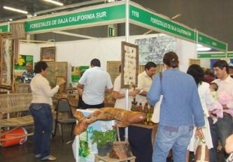 La Expo Forestal México Siglo XXI es el marco ideal para la promoción e impulso de la industria forestal de la región.