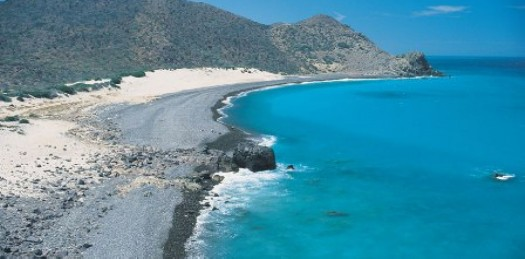Organizaciones ambientalistas, como Greenpeace, exigen a Semarnat cancelar el proyecto de desarrollo en Cabo Pulmo, que podría causar graves daños como los que actualmente enfrenta Cancún.