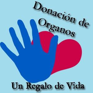 ley-de-transplante-de-organos