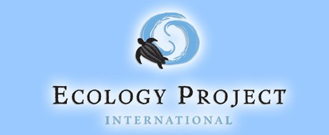 ecology project international Ecology, the environment and conservation this complex theme deals primarily with interactions between organisms and the environmental factors that impact them, but.
