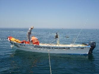 Pesca_Luz