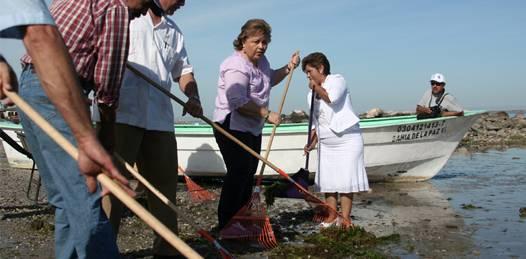 """Arranca en La Paz  el """"Programa de Limpieza de Playas"""""""