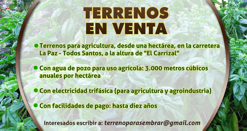 Terrenos Agrícolas en Venta – Haz clic para contactar con nosotros
