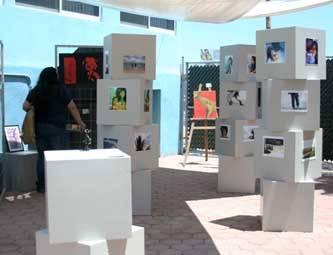 Alrededor de veinte alumnos muestran sus obras, en técnicas como ilustración en acrílico, acuarela, fotografía, tinta china, grabado y escultura. Más de cuarenta piezas se encuentran en exhibición.