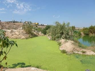 """Martín Salinas Ceseña, coordinador de Agua Potable en Los Cabos, manifestó que en el arroyo Salto Seco """"hay un problema serio, no es un secreto y el Organismo Operador, ha sido lo suficientemente responsable para dar la cara sobre este tema que además estamos tratando con la responsabilidad que amerita""""."""