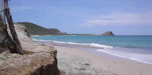 """Urgente calificación de """"patrimonio amenazado"""" para Cabo Pulmo piden ONG'S"""