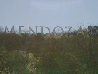 mendoza333