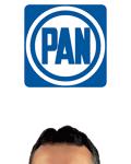 Banner - Pancho Pelayo - PAN