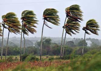 Oficialmente hoy 15 de mayo, comienza la temporada de huracanes y ciclones en el Océano Pacífico, para la cual se diagnostican 13 fenómenos, uno menos a comparación del año pasado.