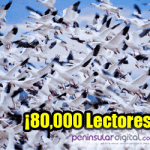 8000-lectores-2