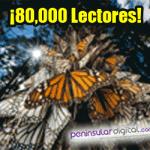 8000-lectores-6
