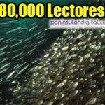 8000-lectores-7