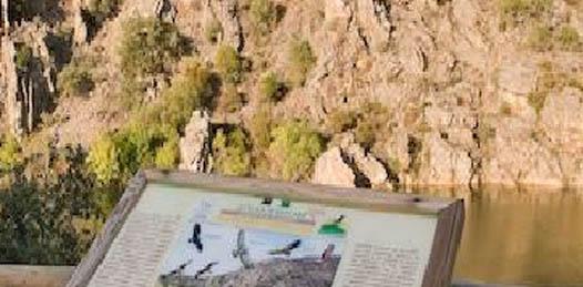 La construcción del acueducto El Carrizal-La Paz, en el municipio de La Paz; la obra de protección del arroyo Insurgentes y la Presa La Higuerilla, en el municipio de Comondú; así como la Presa La Palma y la modernización del Radar Meteorológico, en el municipio de Los Cabos se realizan con dinero exclusivamente de la Comisión Nacional del Agua (CONAGUA)