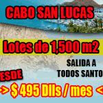 Lotes Todos Santos - Banner