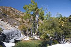 Sierra de la Laguna