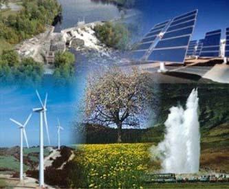 sustentable333
