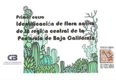 Curso-de-flora
