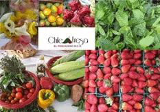 chile_y_fresa