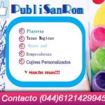 Publi San Rom (banner)