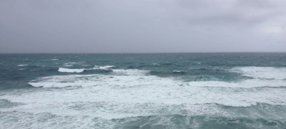 Ivo en los Cabos