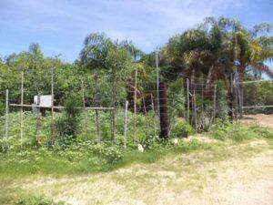 terreno ubicado en la colonia Lomas de Guaymitas