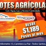 Lotes agrícolas