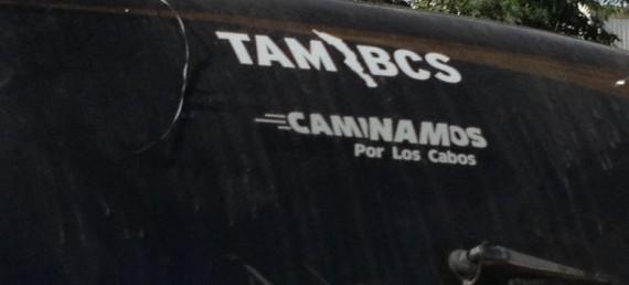 TAM BCS