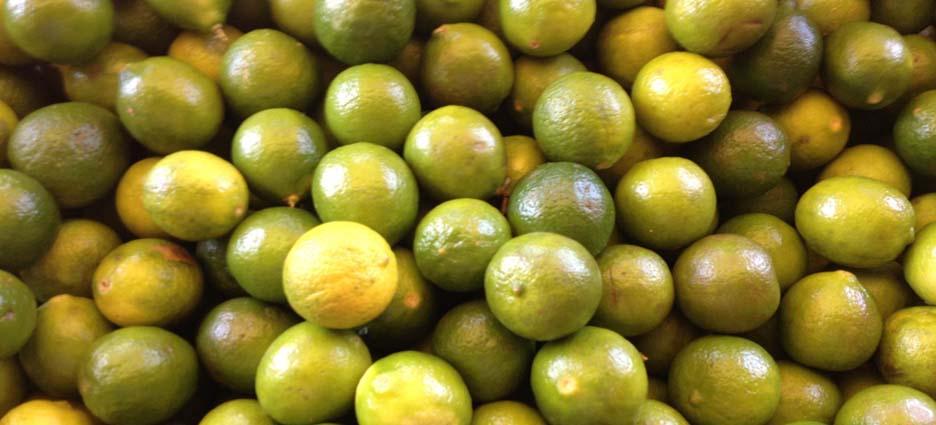 Alza al limon