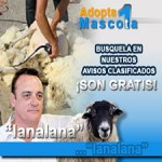 Adopta una mascota (lana 225x225)