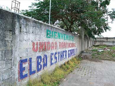 elba-esther