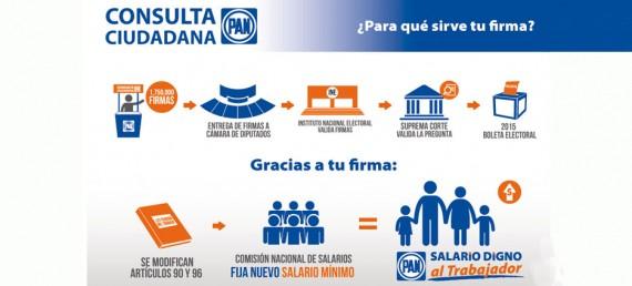 consulta panista sobre salario minimo