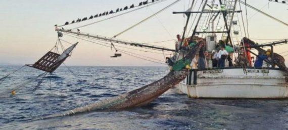 Pescadores del poblado de Todos Santos