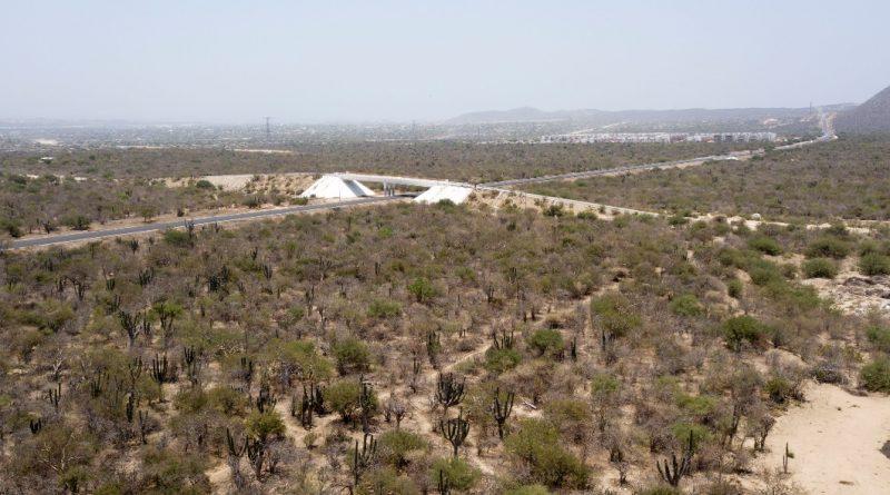Reserva territorial San Lazaro