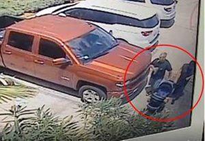 Dos hombres y una mujer son los principales sospechosos de presuntamente robar un tiburón del Acuario de San Antonio, Texas, Estados Unidos.